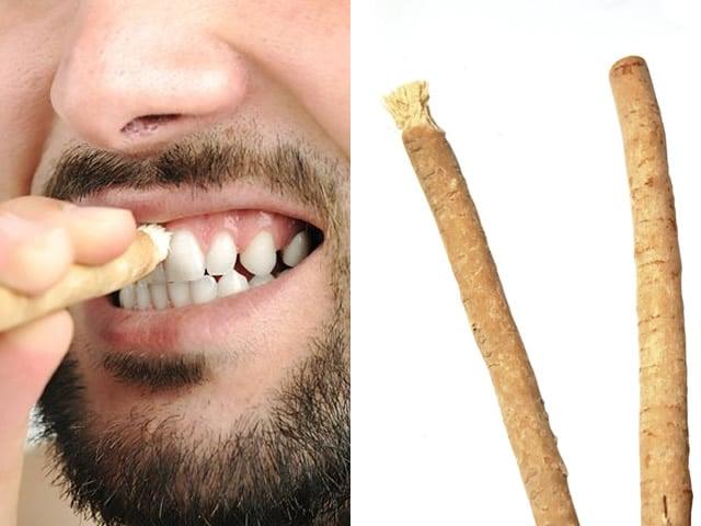 Come si usa lo spazzolino naturale Miswak